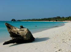 Zanzibar – full fart under ytan