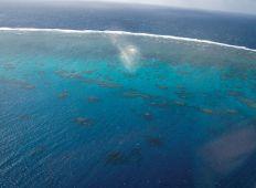Stora Barriärrevet – ensamt i sitt slag