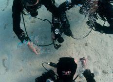 Unified Team Diving – Instruktør-crossover  i ny DIR-organisation