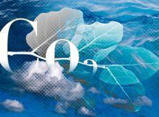 Kuldioxid – och dess kusin kolmonoxid