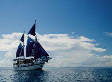 Indonesien – Världens största marina mångfald!