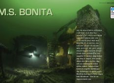 M.S. Bonita