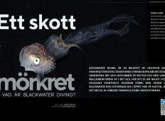 Ett skott i mörkret - Vad är blackwater diving?