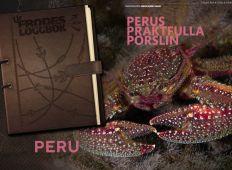 Perus praktfulla porslin – Ur Frodes loggbok