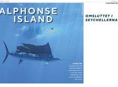 Alphonse Island – Omgiven av lyx  på Seychellerna