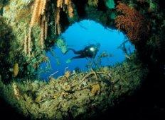 Korallkalas – Wakatobi visar vägen