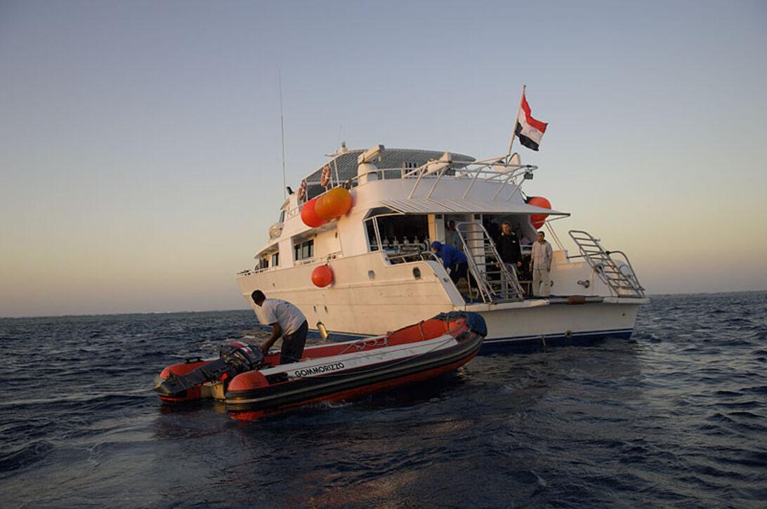 Röda Havet för sig själv – på dyksafari i södra Egypten