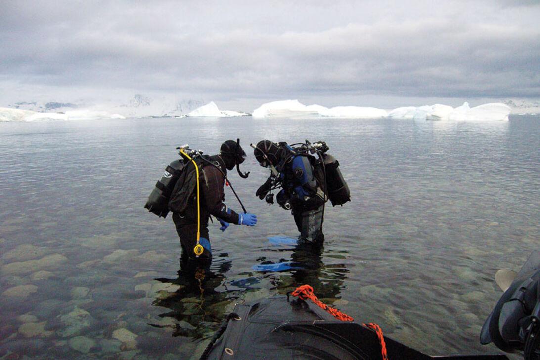 Den Vita Kontinenten – Möt Antarktis makalösa värld ...