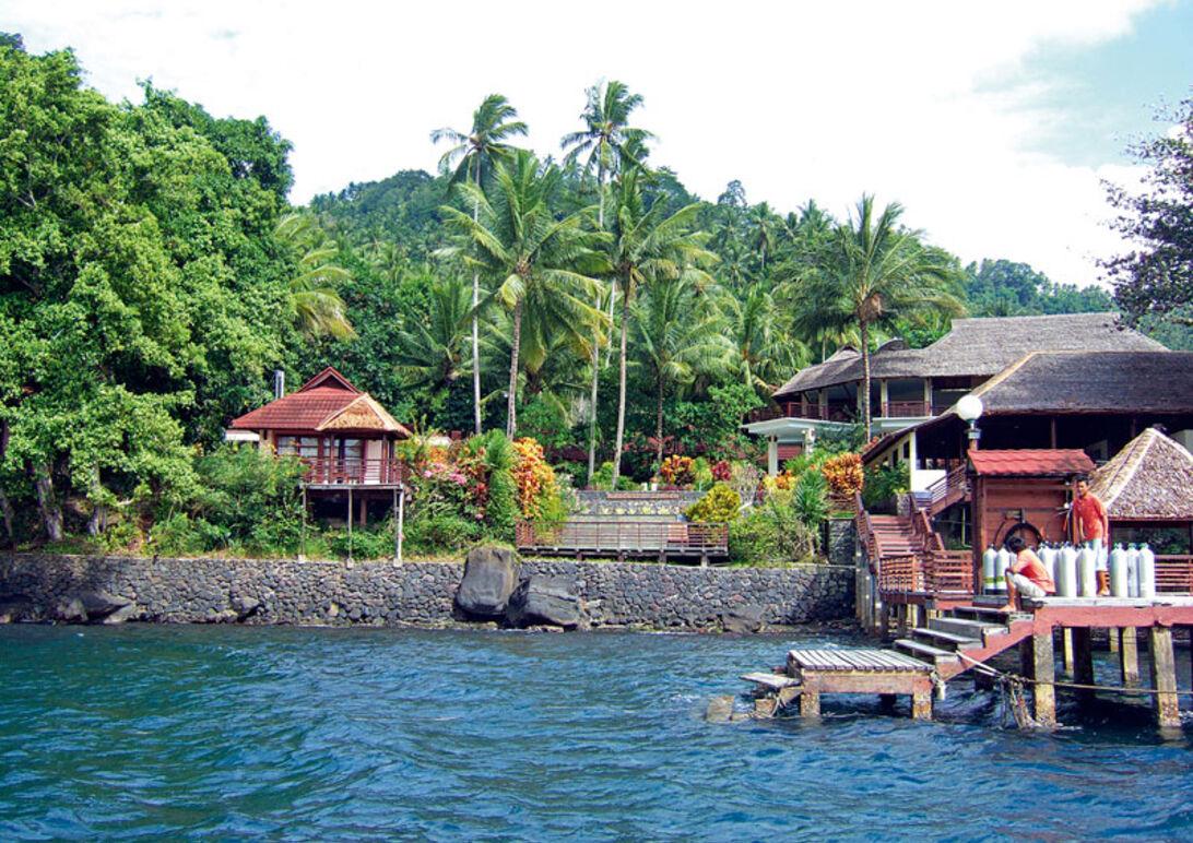 Helsåld – på Sulawesi