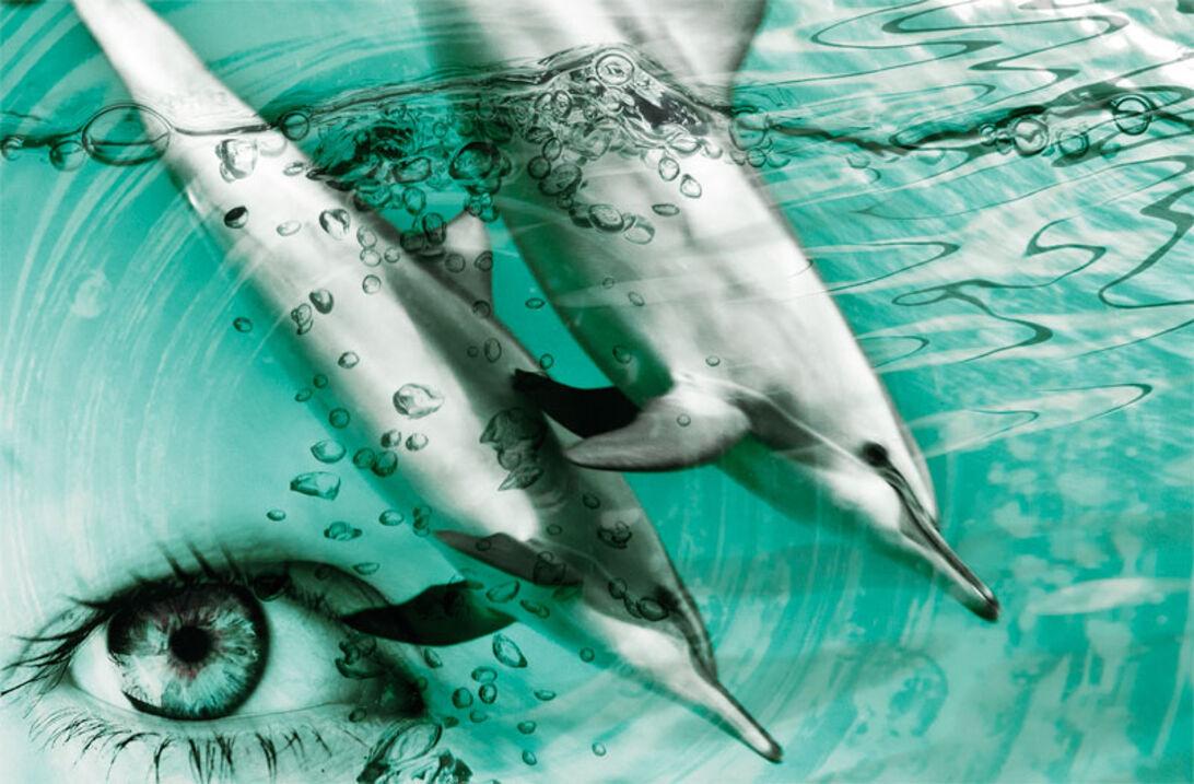 Doping – lär av havsdäggdjuren