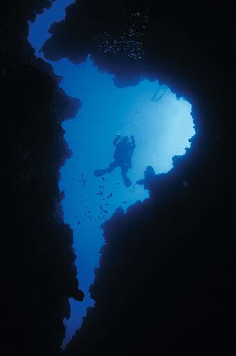 Röda Havet A-Z