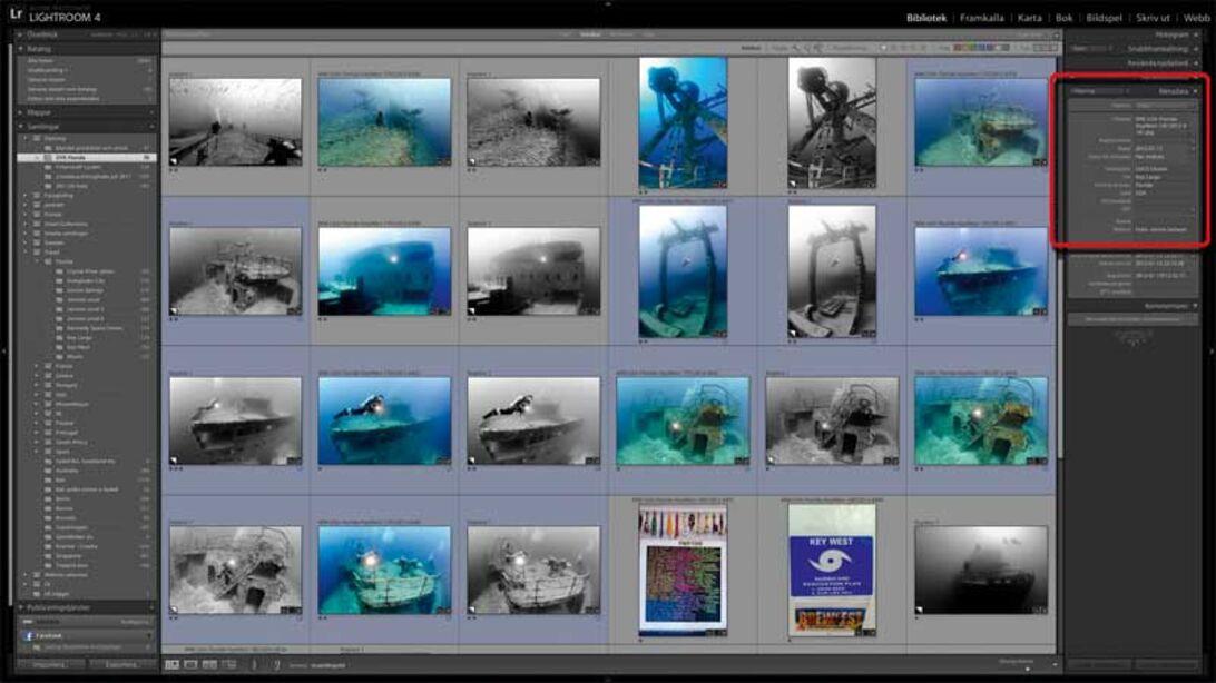 Markos fotodagbok – Del 3 – Så skapar du ett bra bildarkiv