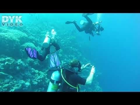 Blue Hole – Dahab, December 2019. Video: Alex Resendorf