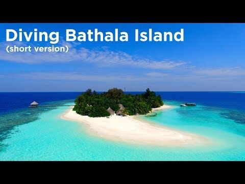 Dykning ved Bathala Maaga Kanthila. Video: Divetobealive