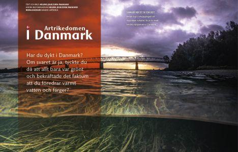 Artrikedomen i Danmark
