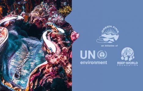 Paralenz donerer stort beløb til Green Fins
