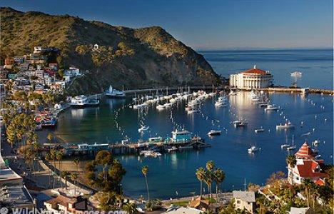 Catalina Foto: GUE