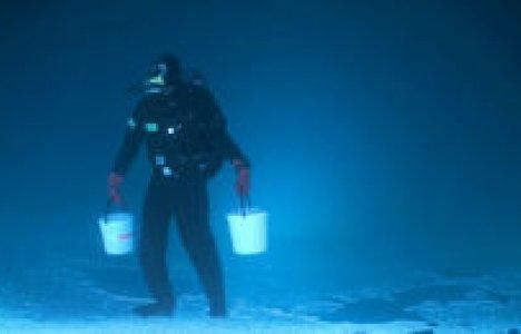 """Fishing under ice"""