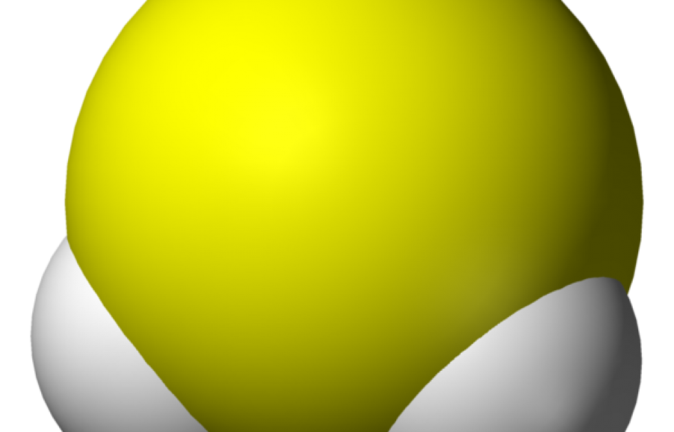 Svavelväte orsakar bottendöd vid syrebrist Bild: Wikipedia
