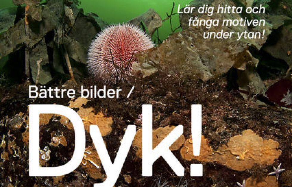 Bättre Bilder/Dyk! av Tobias Dahlin och Martin Borg.