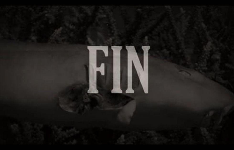 Bild från Bite-Backs skräckfilm som tyvärr inte är påhittad.