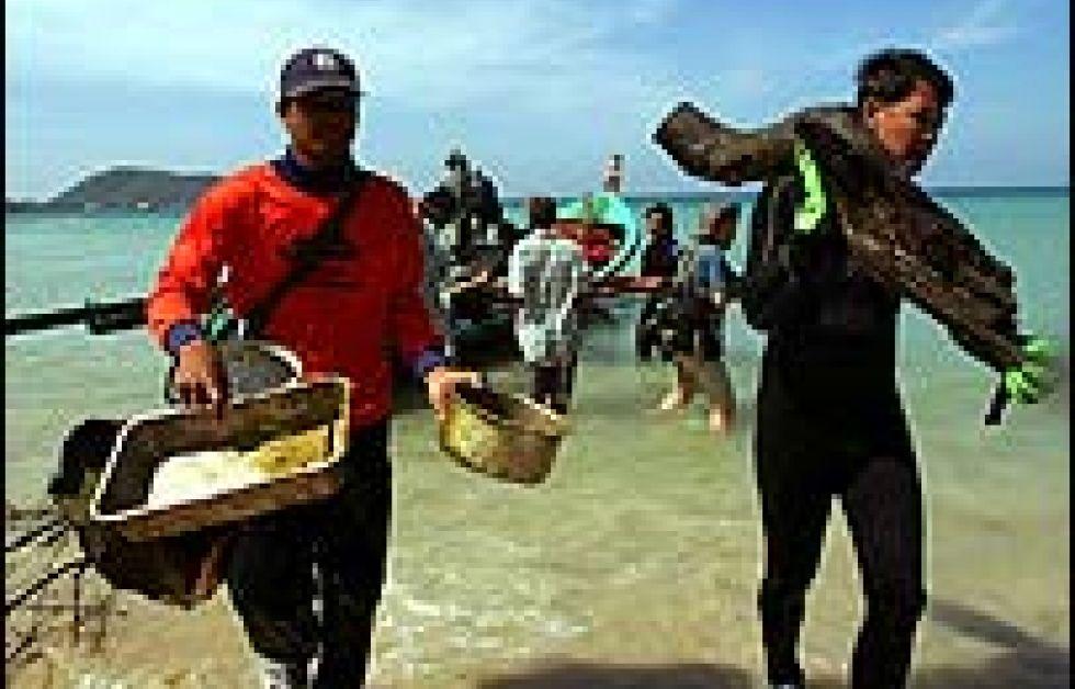 Efter tsunamin
