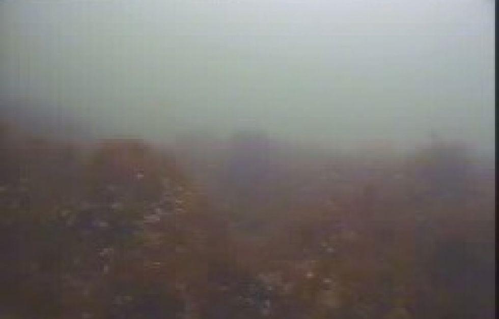 Webbkamera i Öresund