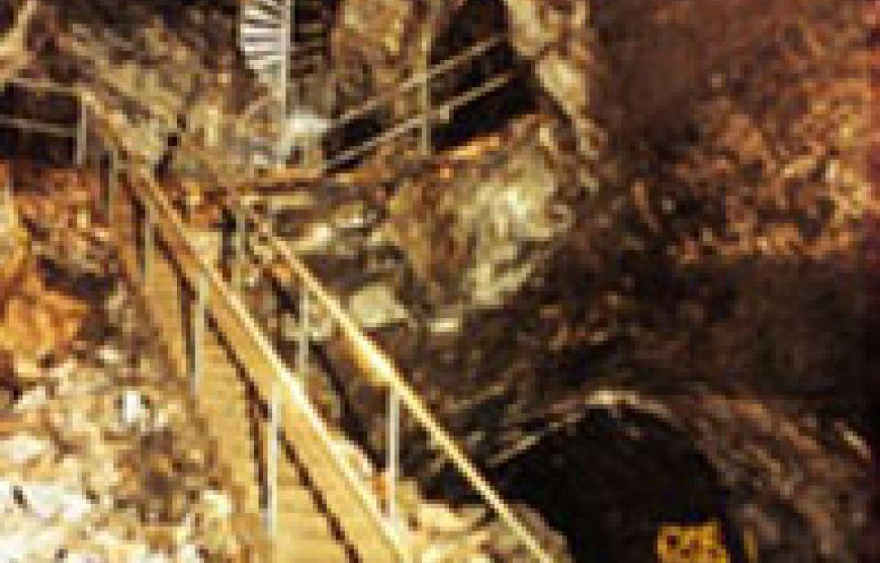 Dykolycka i Sala