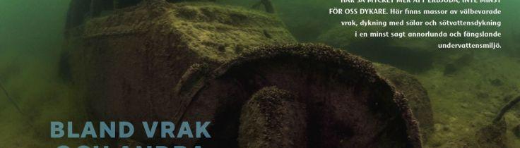 Estland – bland vrak och andra fängslande dykplatser
