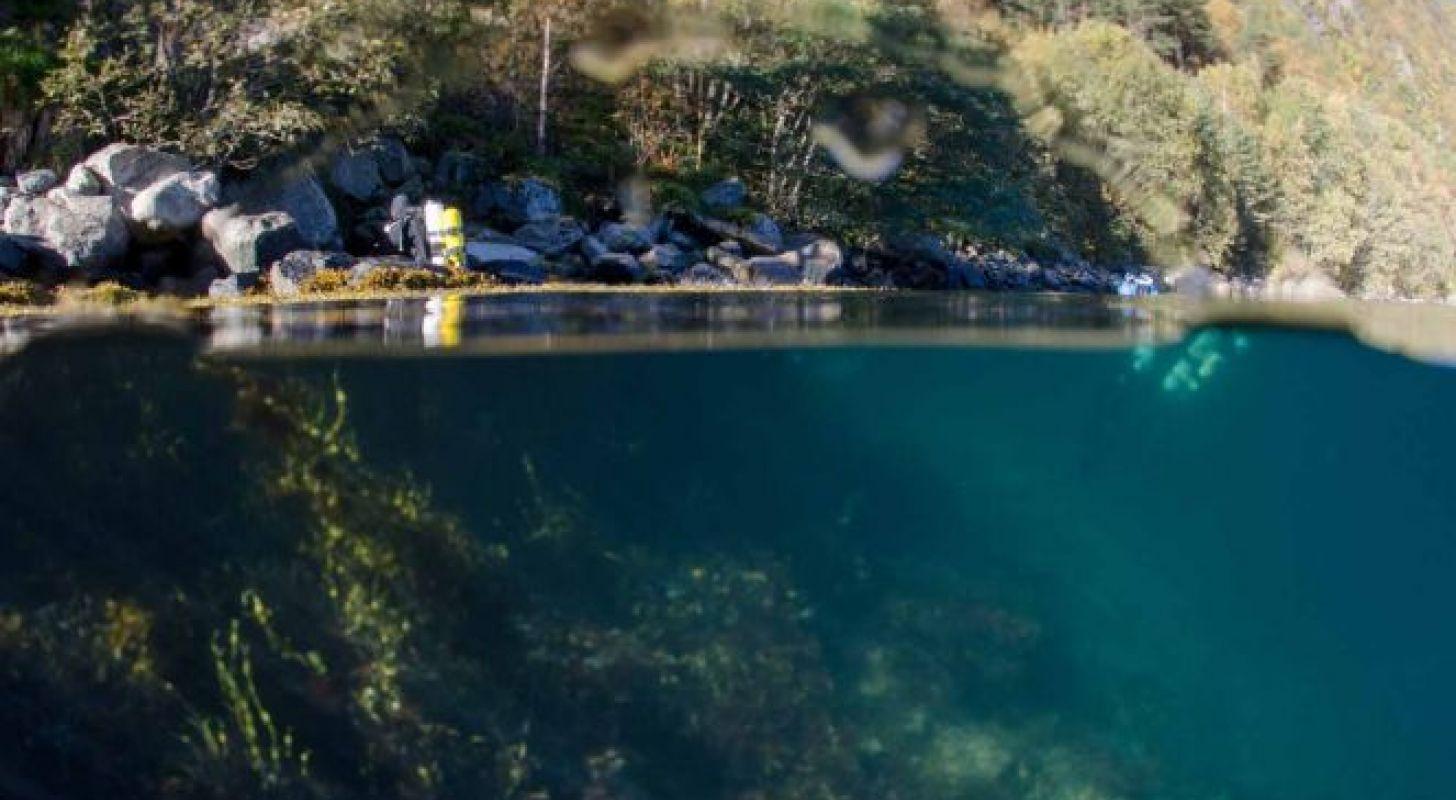 Sognefjorden – Ingerseks