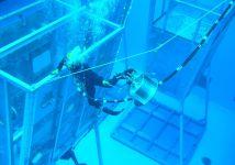 Projekt Dive-X